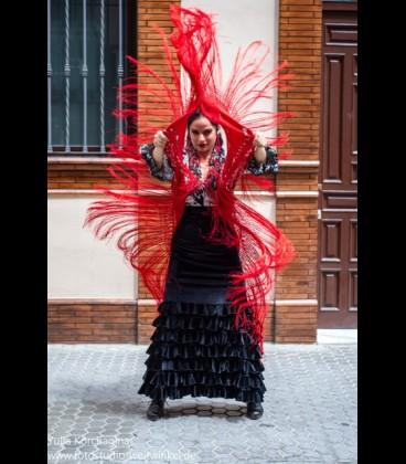 Falda de flamenco profesional モデルアレグリアス 特別生地